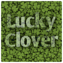 Find Lucky Clover icon