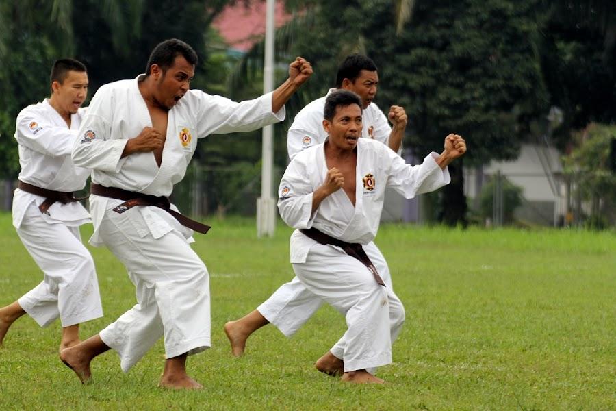Shorinji Kempo EMBU by Zulfikar Achmad - Sports & Fitness Other Sports
