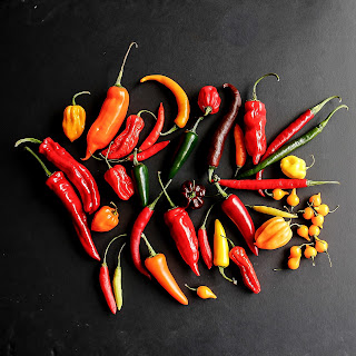 About chilli peppers and Homemade roasted chilli sauce