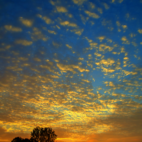 Sunset Michigan by Theodore Schlosser - Landscapes Sunsets & Sunrises ( clouds, michigan, awesome, color ful, sunset )