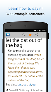 Idioms and Slang Dictionary- screenshot thumbnail