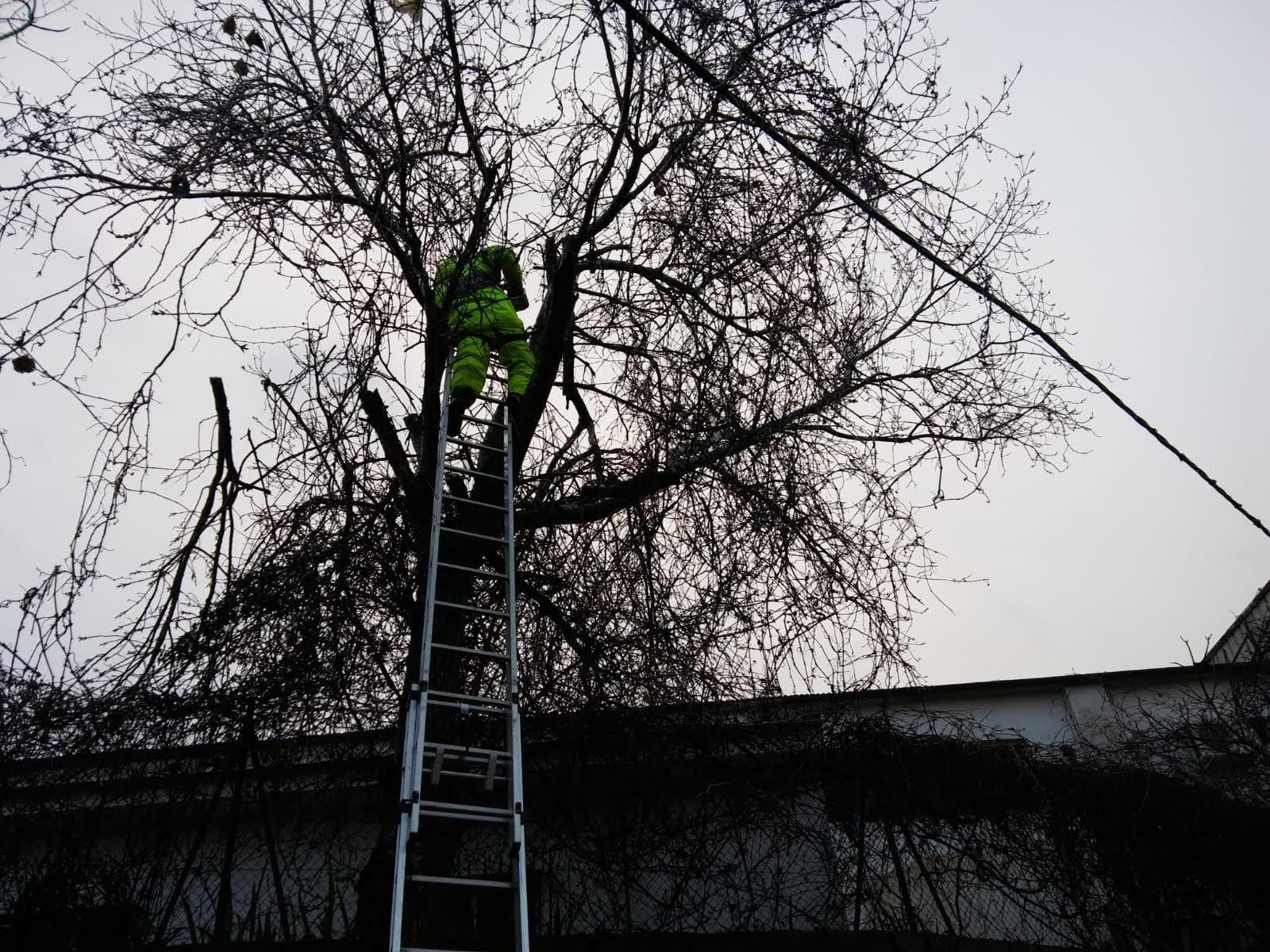 30 salidas de bomberos por el temporal de lluvia y viento en las últimas horas
