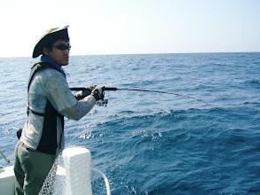 """Photo: 今日は、海賊みたいな""""ヨコハマさん""""にもヒット! ・・・あっ! バレた。"""