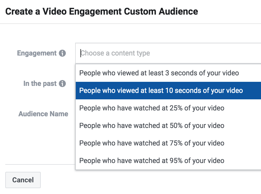 Custom Audience Option for FB Video Ads