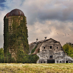 Worn out barn by Debra Graham - Buildings & Architecture Decaying & Abandoned ( barn, silos )