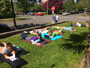 Photo: Sunning on the lawn