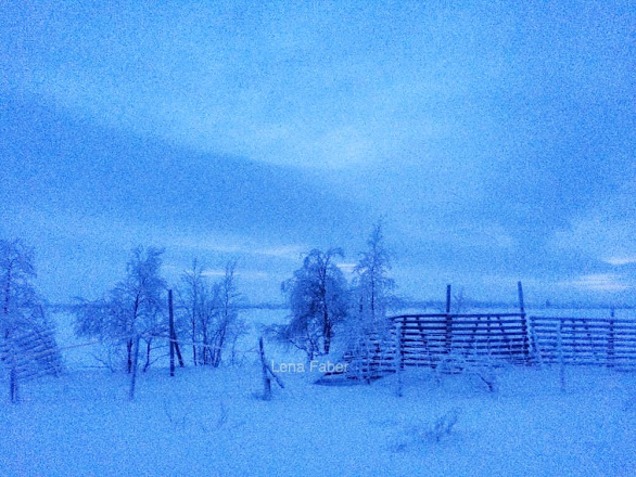 Photo: On the way from Ivalo to Nordkapp