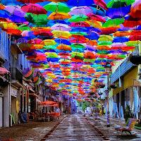 Ombrelli in strada di