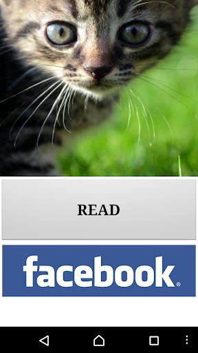 Audiobook - Cat Care