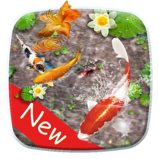 3D Koi Fish Launcher