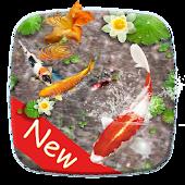 Tải 3D Koi Fish Launcher APK