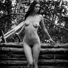 Log Fence by James Baker - Nudes & Boudoir Artistic Nude ( farm, model, nude, barn, kallia, 825555, forest,  )