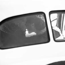 Wedding photographer Zlatana Lecrivain (aureaavis). Photo of 15.01.2018