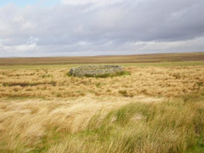 Photo: PW - From Tan Hill to Middleton in Teesdale: sheepfold in Wytham Moor