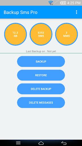 Backup Sms Pro