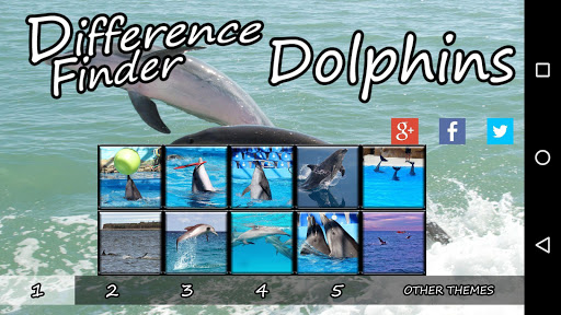 Difference Finder Dolphins