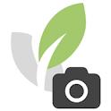 Green Solutions Fotos App icon