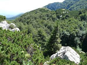 Photo: dintorni Monte Risnjak