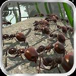 Ant Simulator 3D