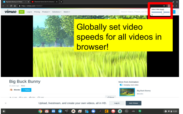 Set Video Speed Globally