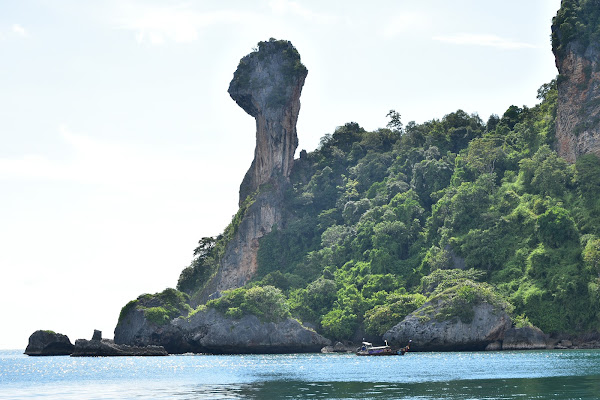 Cruise around Chicken Island and spot the bizarre rock formation
