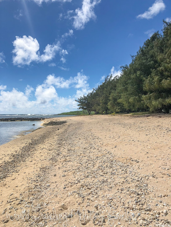 First Salvo Beach Sea Glass Guam