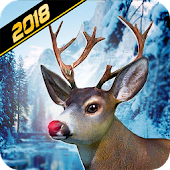Animal & Deer Hunter 2018