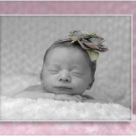 Just Resting by Todd Wallarab - Babies & Children Babies ( sleep, pink, pretty, resting, baby, girl, cute )