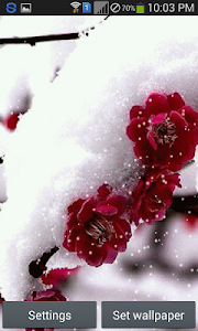 Snow Rose - Live Wallpaper screenshot 5