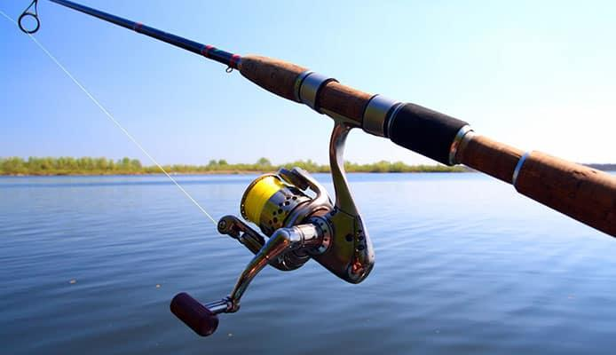 10 Best Spinning Rods In 2021 🥇   Tested and Reviewed by Fishing  Enthusiasts - Globo Surf