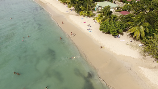 le-marin-drone-footage7.png - Drone footage of the beach in Le Marin, Martinique, taken during a sailing on Silver Spirit.