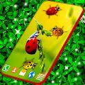 Ladybug Live Wallpaper 🐞 Cute Ladybird Wallpapers icon