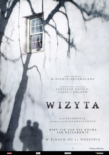 Przód ulotki filmu 'Wizyta'