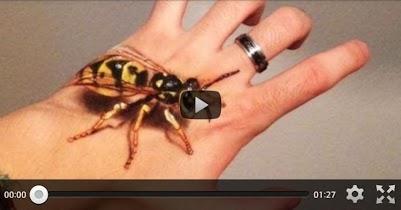 Hand Art Illusion - screenshot thumbnail 17