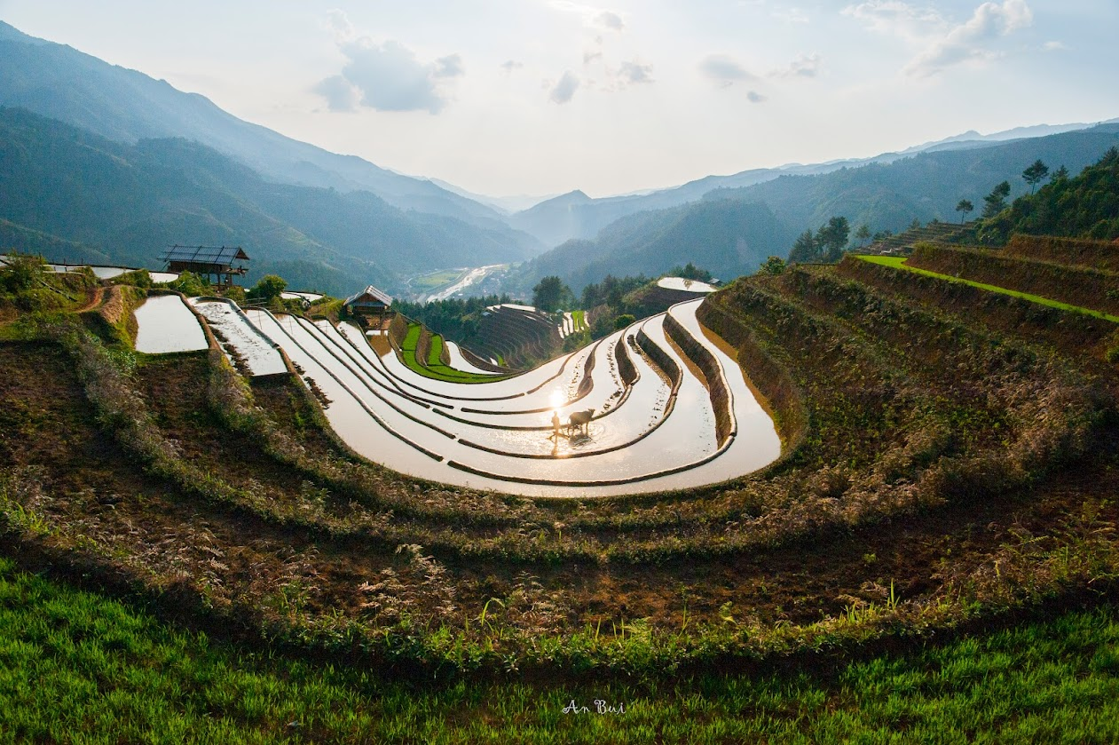 Sunset with the nice view of rice terrace in Mu Cang Chai
