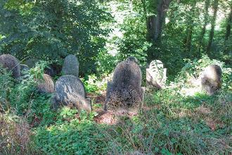 Photo: židovský hřbitov v Biala