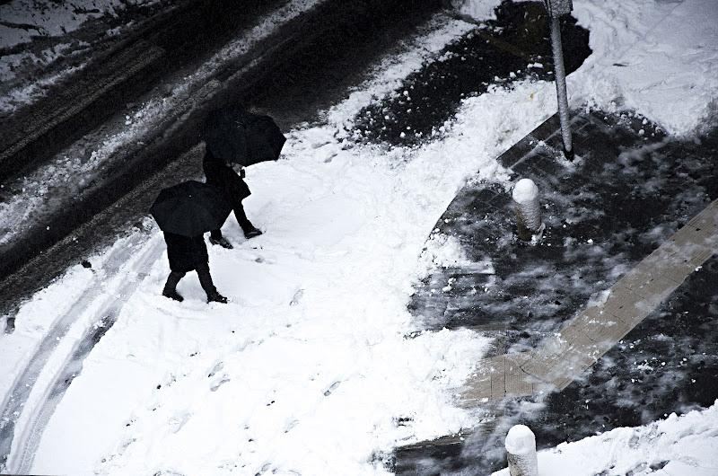 Ombrelli da neve di Mias