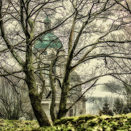 Behind the trees by Janet Packham - City,  Street & Park  City Parks ( woods, monument, trees, building, lancaster, architecture )