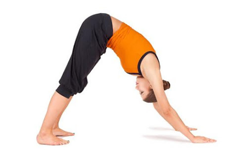 yoga poses for beginner  weight loss yoga dance  apps on