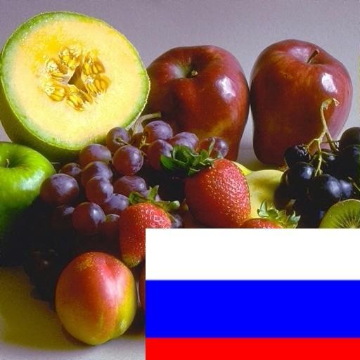 了解俄罗斯水果 教育 App LOGO-APP試玩