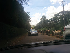 Photo: Streets on the outskirts of Nairobi. Don't get it twisted though, this is a real city.