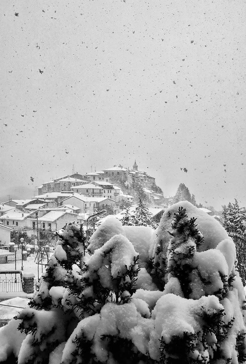 Slow Snow di elena_di_giacomo