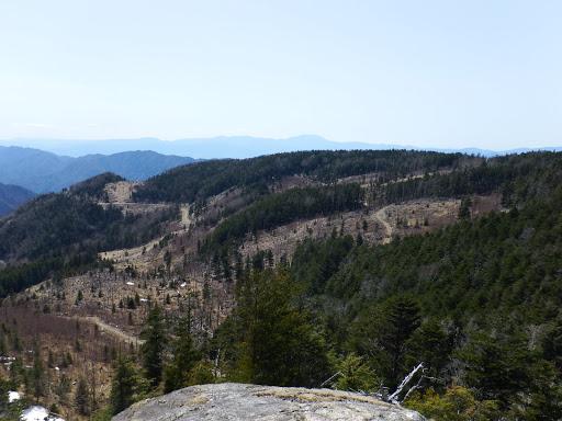 伐採地を望む