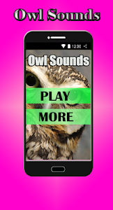 Owl Sounds screenshot 0