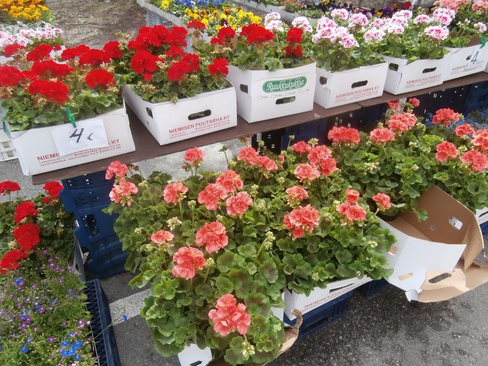 Piilolan kukkakauppa