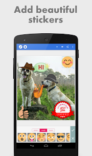 PixelLab Mod Apk – Text on pictures 3