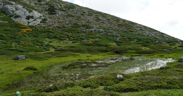 Lagunas en el Pico del Nevero