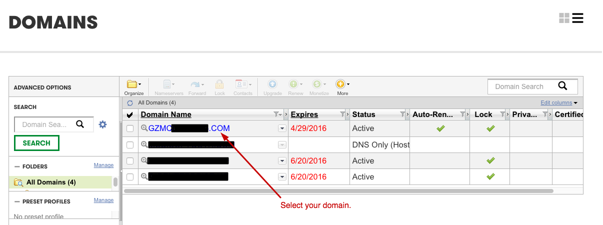 how to put dns onto your ip minecrfat server hosting