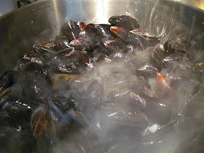 Photo: steaming mussels 1