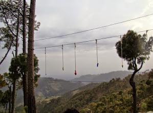 Photo: Mogli Walk - 15ft High rope Course
